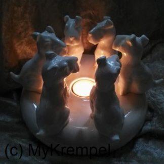 """""""Licht der Hoffnung"""""""